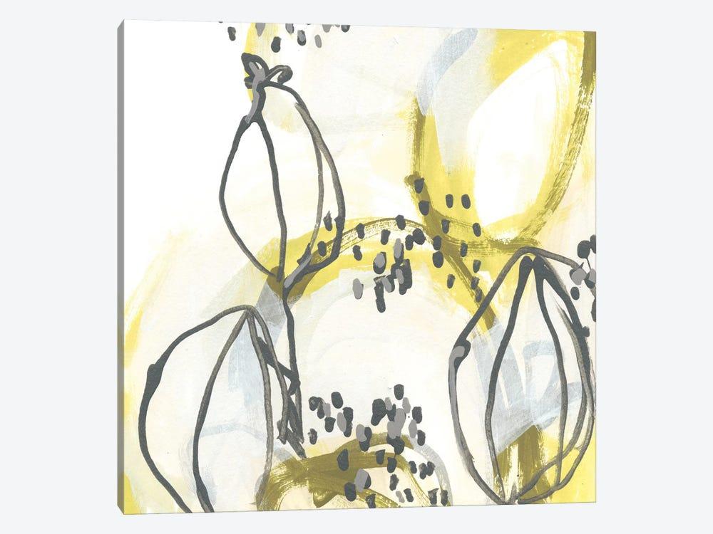 Podular III by June Erica Vess 1-piece Canvas Art