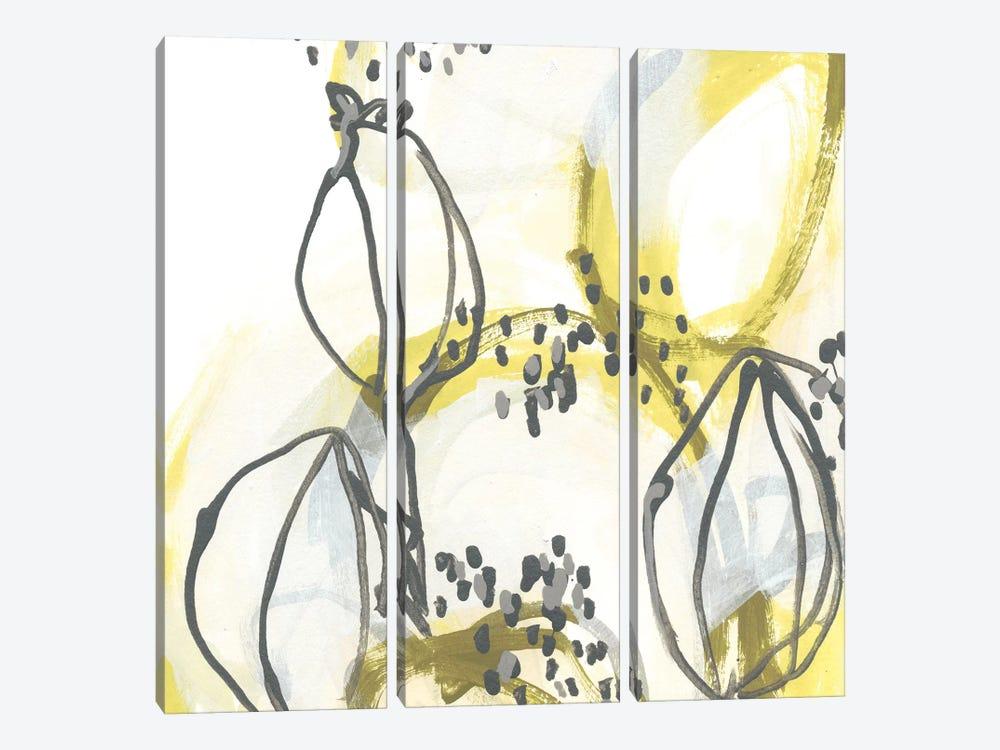 Podular III by June Erica Vess 3-piece Canvas Art