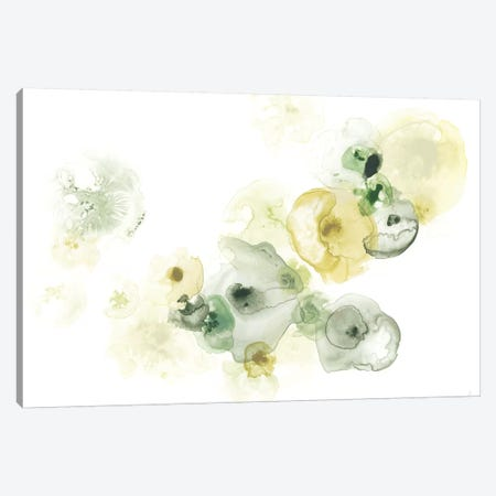 Rock Lichen I Canvas Print #JEV815} by June Erica Vess Canvas Artwork