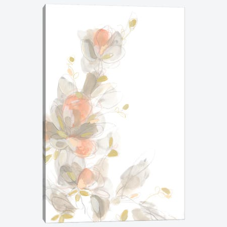Roseus II Canvas Print #JEV818} by June Erica Vess Canvas Print