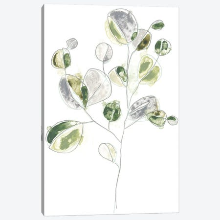 Sea Greens II Canvas Print #JEV826} by June Erica Vess Canvas Print