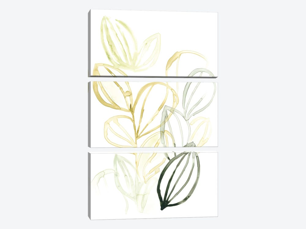 Seed Spectrum I by June Erica Vess 3-piece Canvas Artwork