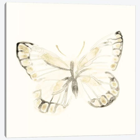 Sepia Butterfly Impressions I Canvas Print #JEV839} by June Erica Vess Canvas Art Print