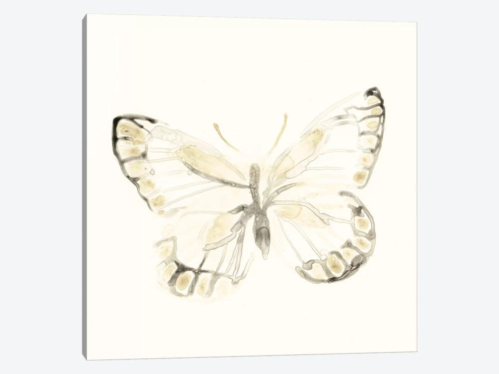 Sepia Butterfly Impressions I by June Erica Vess 1-piece Canvas Print