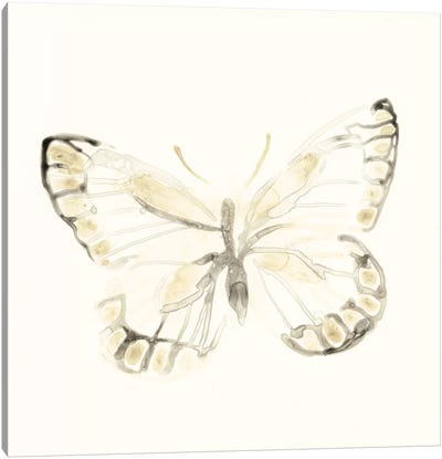 Sepia Butterfly Impressions I Canvas Art Print