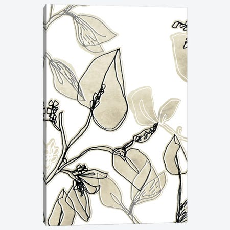Block Print Contour I Canvas Print #JEV83} by June Erica Vess Canvas Artwork