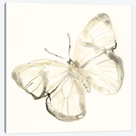 Sepia Butterfly Impressions III Canvas Print #JEV841} by June Erica Vess Canvas Wall Art