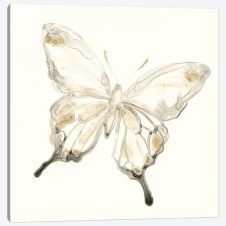 Sepia Butterfly Impressions IV Canvas Print #JEV842} by June Erica Vess Canvas Artwork