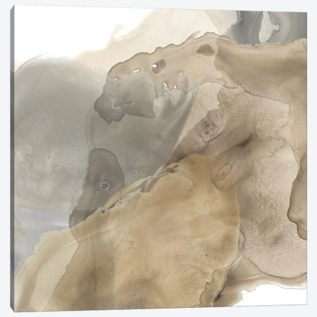 Tectonic Drift III Canvas Print #JEV849} by June Erica Vess Canvas Wall Art