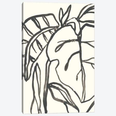 Tropical Contour I Canvas Print #JEV853} by June Erica Vess Canvas Art Print
