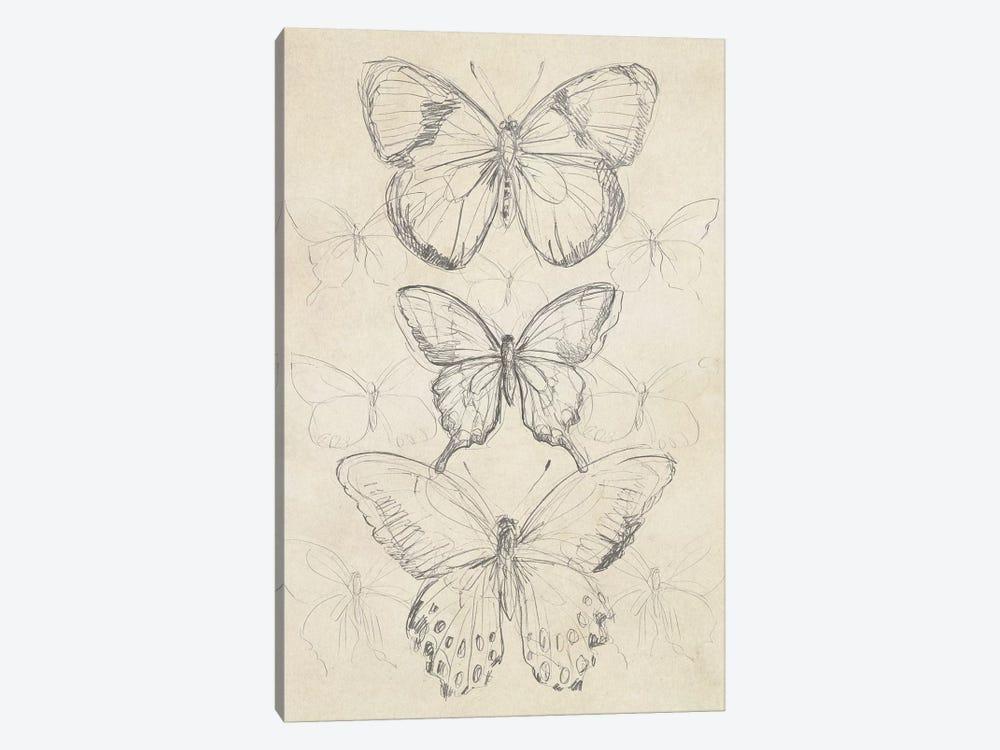 Vintage Butterfly Sketch I by June Erica Vess 1-piece Canvas Art