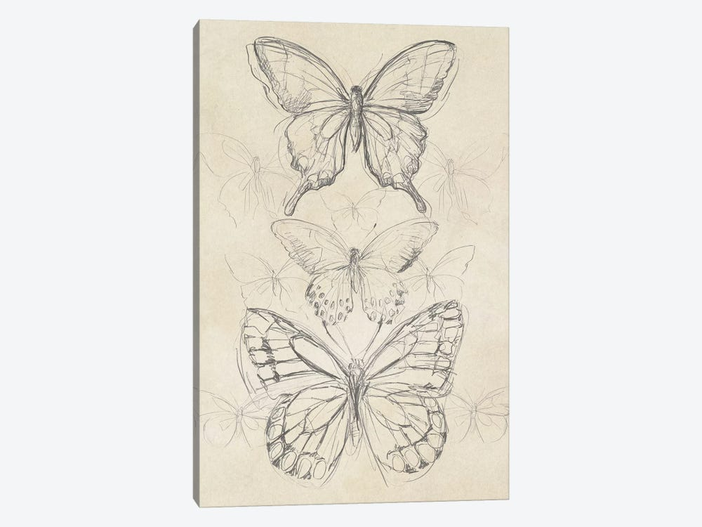 Vintage Butterfly Sketch II by June Erica Vess 1-piece Canvas Print
