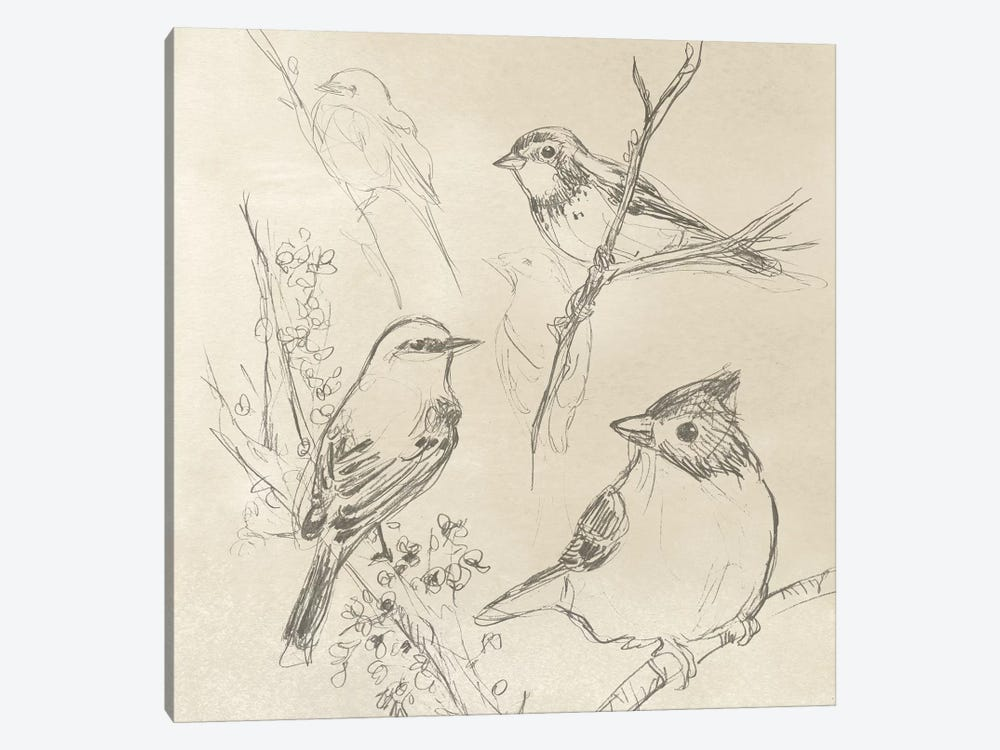 Vintage Songbird Sketch I by June Erica Vess 1-piece Canvas Wall Art