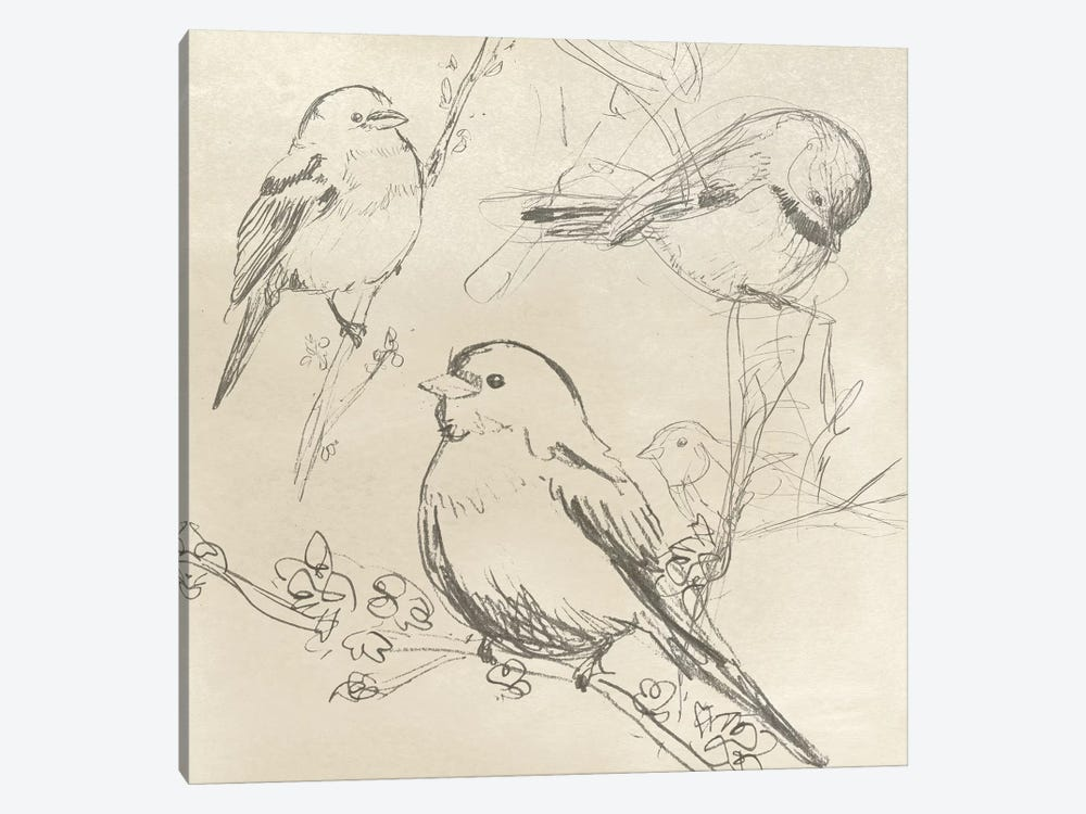 Vintage Songbird Sketch II by June Erica Vess 1-piece Art Print