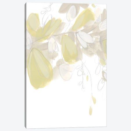 Viridis IV Canvas Print #JEV870} by June Erica Vess Canvas Print
