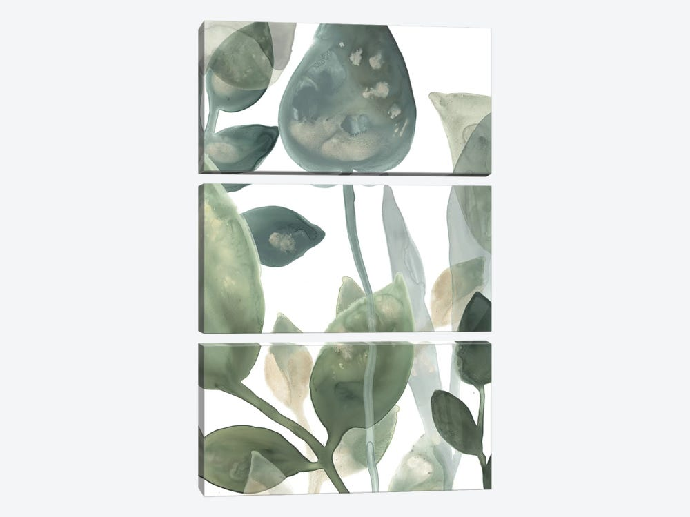 Water Leaves I by June Erica Vess 3-piece Canvas Print