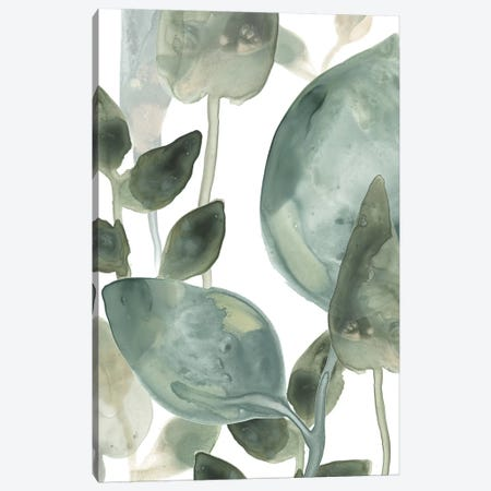 Water Leaves II Canvas Print #JEV872} by June Erica Vess Art Print
