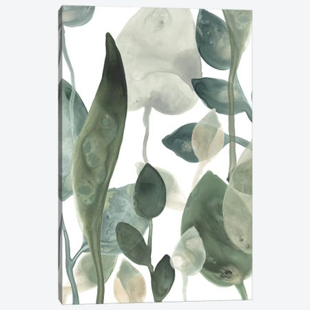 Water Leaves III Canvas Print #JEV873} by June Erica Vess Canvas Print