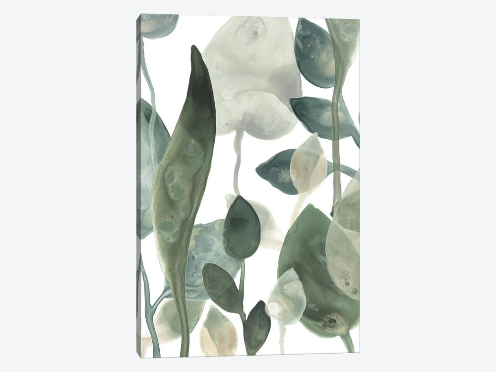 Water Leaves III by June Erica Vess 1-piece Canvas Art Print