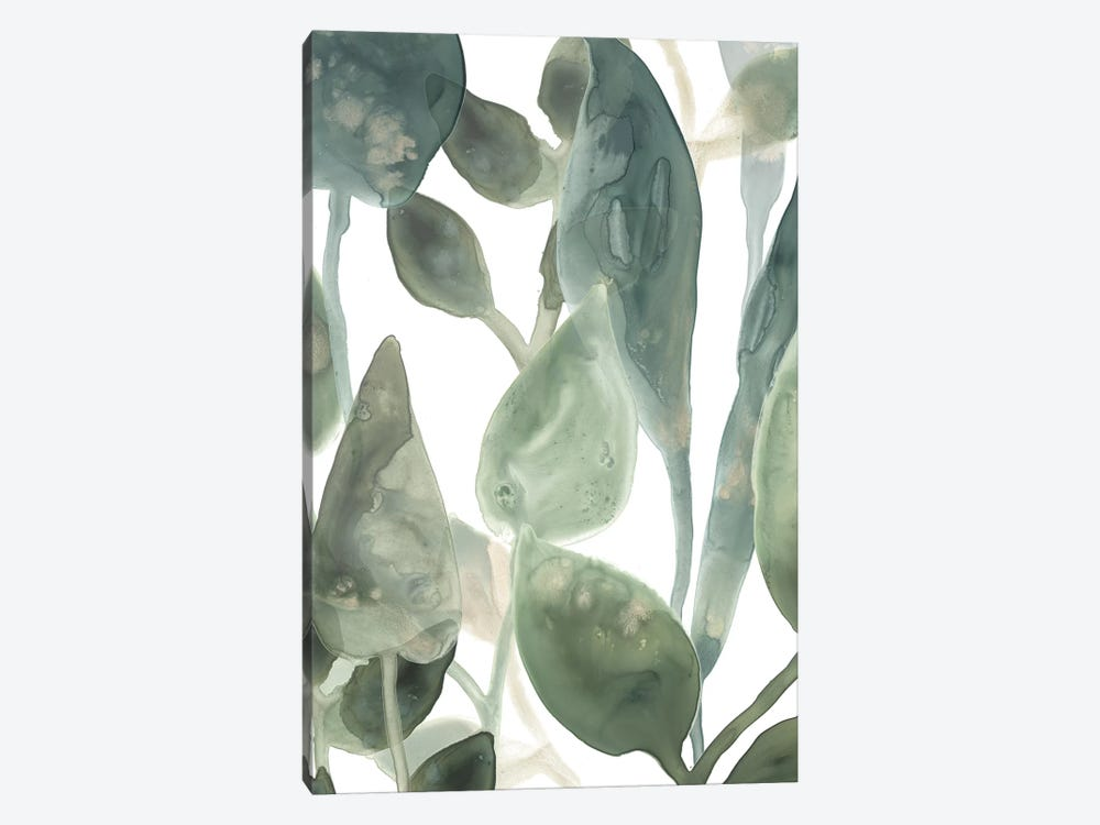 Water Leaves IV by June Erica Vess 1-piece Canvas Wall Art