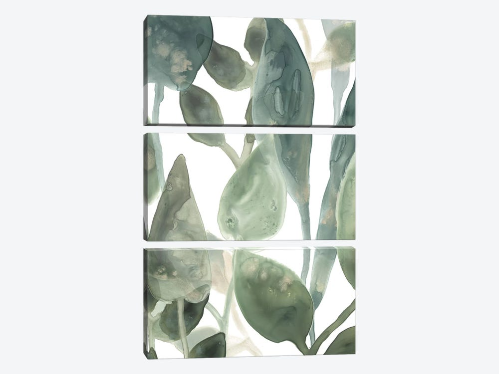Water Leaves IV by June Erica Vess 3-piece Canvas Artwork