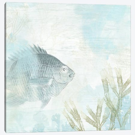 Coastal Fresco I Canvas Print #JEV91} by June Erica Vess Art Print
