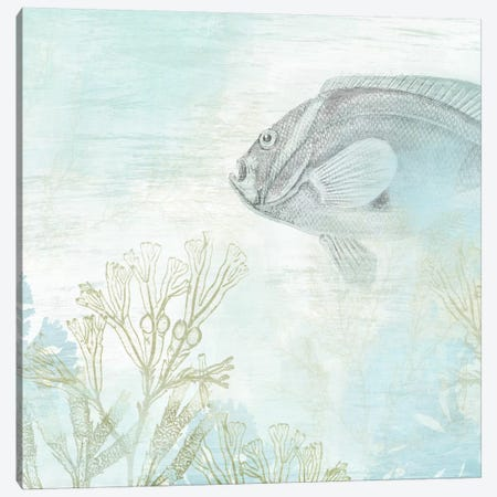 Coastal Fresco II Canvas Print #JEV92} by June Erica Vess Art Print