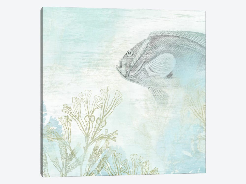 Coastal Fresco II by June Erica Vess 1-piece Art Print
