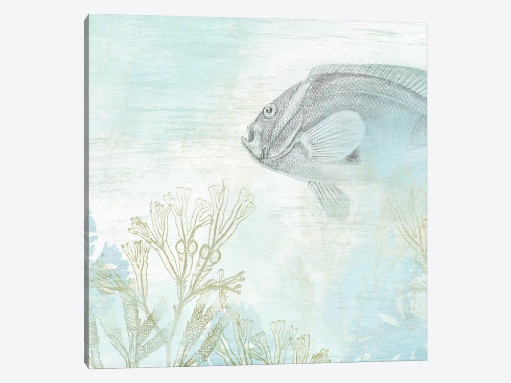 Coastal Fresco II by June Erica Vess 1-piece Art Print