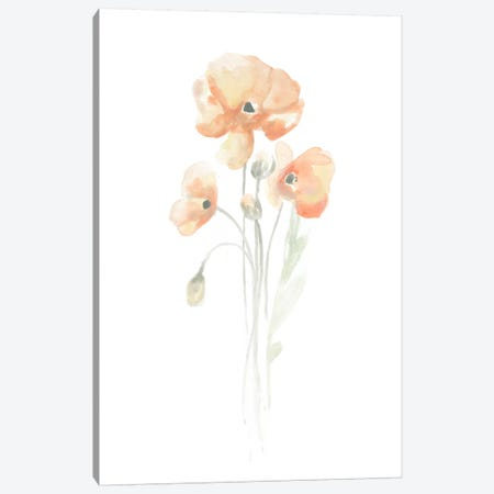 Delicate Bouquet I Canvas Print #JEV93} by June Erica Vess Canvas Print