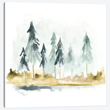 Lake Shore I Canvas Print #JEV949} by June Erica Vess Art Print