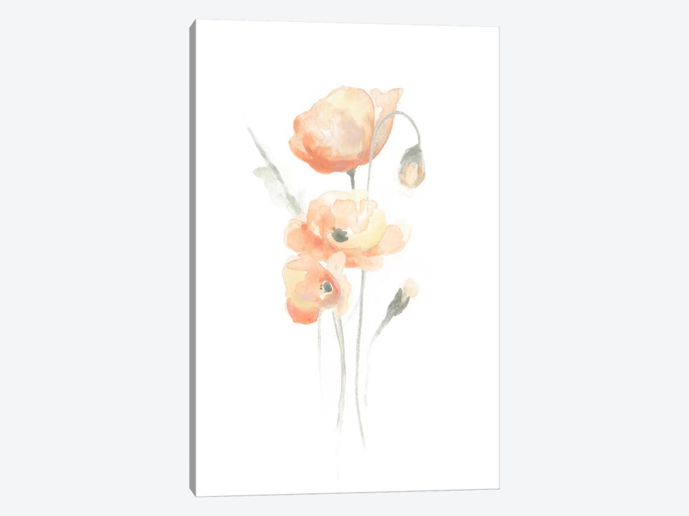 Delicate Bouquet II by June Erica Vess 1-piece Canvas Print