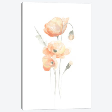 Delicate Bouquet II Canvas Print #JEV94} by June Erica Vess Canvas Artwork