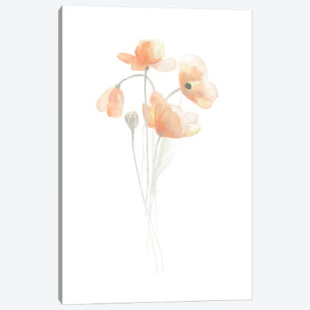 Delicate Bouquet III Canvas Print #JEV95} by June Erica Vess Canvas Artwork