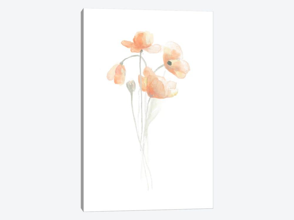 Delicate Bouquet III by June Erica Vess 1-piece Canvas Art