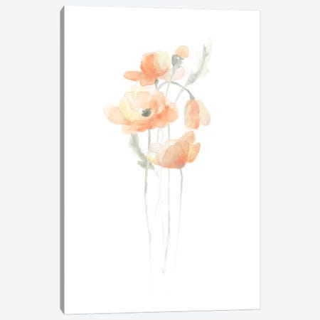Delicate Bouquet IV Canvas Print #JEV96} by June Erica Vess Canvas Art