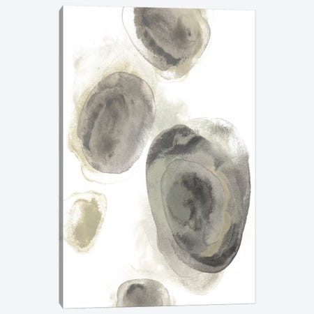 Water Stones II Canvas Print #JEV990} by June Erica Vess Canvas Art