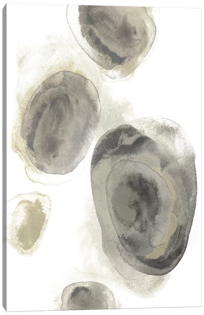 Water Stones II Canvas Art Print