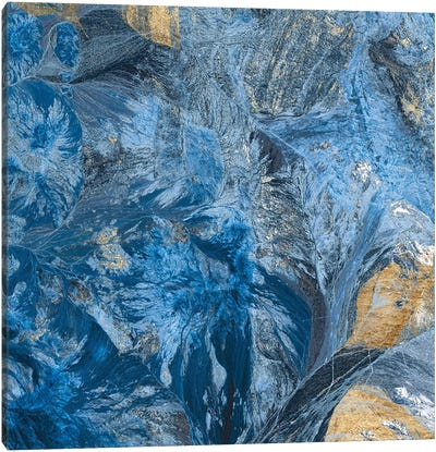 Gilded Indigo III Canvas Art Print