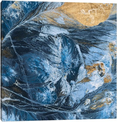 Gilded Indigo IV Canvas Art Print