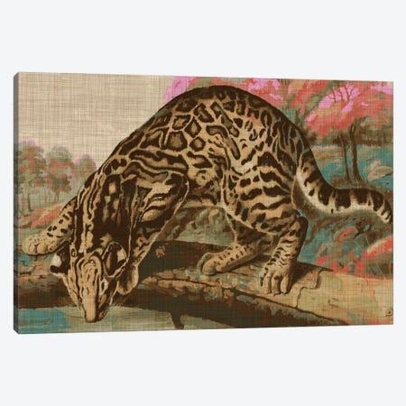 Urban Jungle Cat I Canvas Print #JFA55} by Jarman Fagalde Art Print