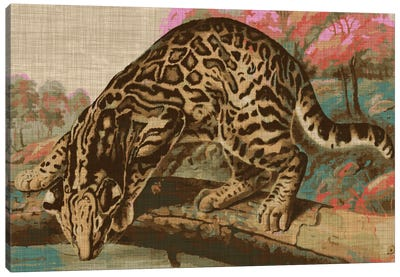Urban Jungle Cat I Canvas Art Print