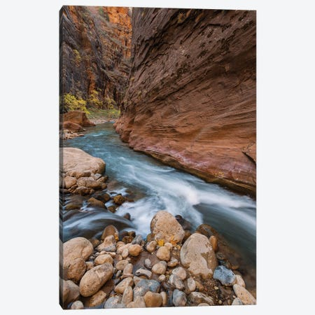 Virgin River, Zion National Park, Utah Canvas Print #JFF101} by Jeff Foott Canvas Artwork