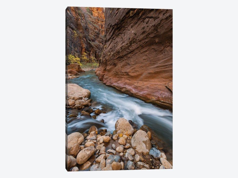 Virgin River, Zion National Park, Utah by Jeff Foott 1-piece Canvas Artwork