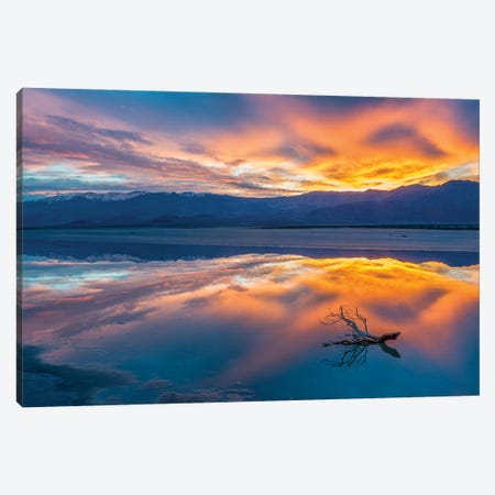 Water in pan at sunrise, Cottonball Basin, Death Valley National Park, California Canvas Print #JFF102} by Jeff Foott Canvas Art