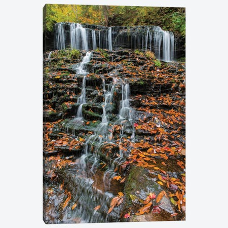 Waterfall in fall, Mohawk Falls, Kitchen Creek, Ricketts Glen State Park, Pennsylvania Canvas Print #JFF104} by Jeff Foott Canvas Print