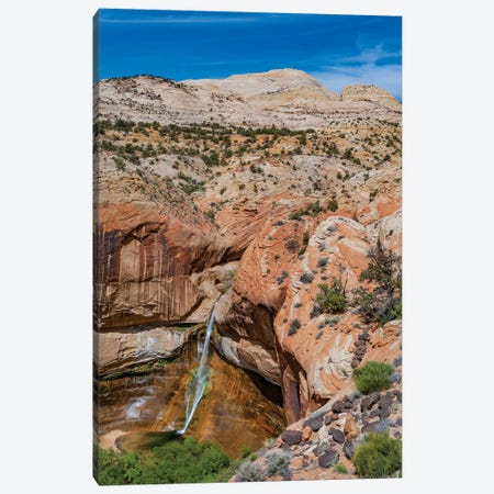 Waterfall In Desert, Calf Creek Falls, Grand Staircase-Escalante National Monument, Utah Canvas Print #JFF10} by Jeff Foott Canvas Print