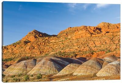 Bentonite hills, Vermilion Cliffs National Monument, Arizona Canvas Art Print