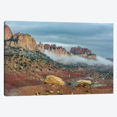 Circle Cliffs, Grand Staircase-Escalante National Monument, Utah Canvas Print #JFF20} by Jeff Foott Canvas Wall Art
