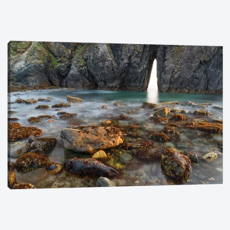 Coastal arch, Harris Beach State Park, Oregon Canvas Print #JFF24} by Jeff Foott Art Print